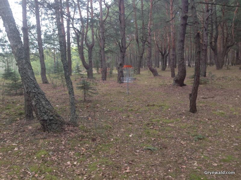Grynwald Disc Golf Hole nr.1 target